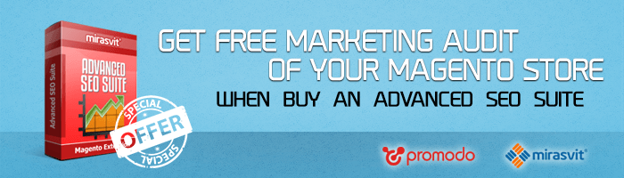 Want a Free Marketing Audit of your Magento Store – buy Advanced SEO Suite!