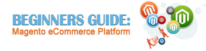Beginners guide: Magento eCommerce Platform - the best platform for your business