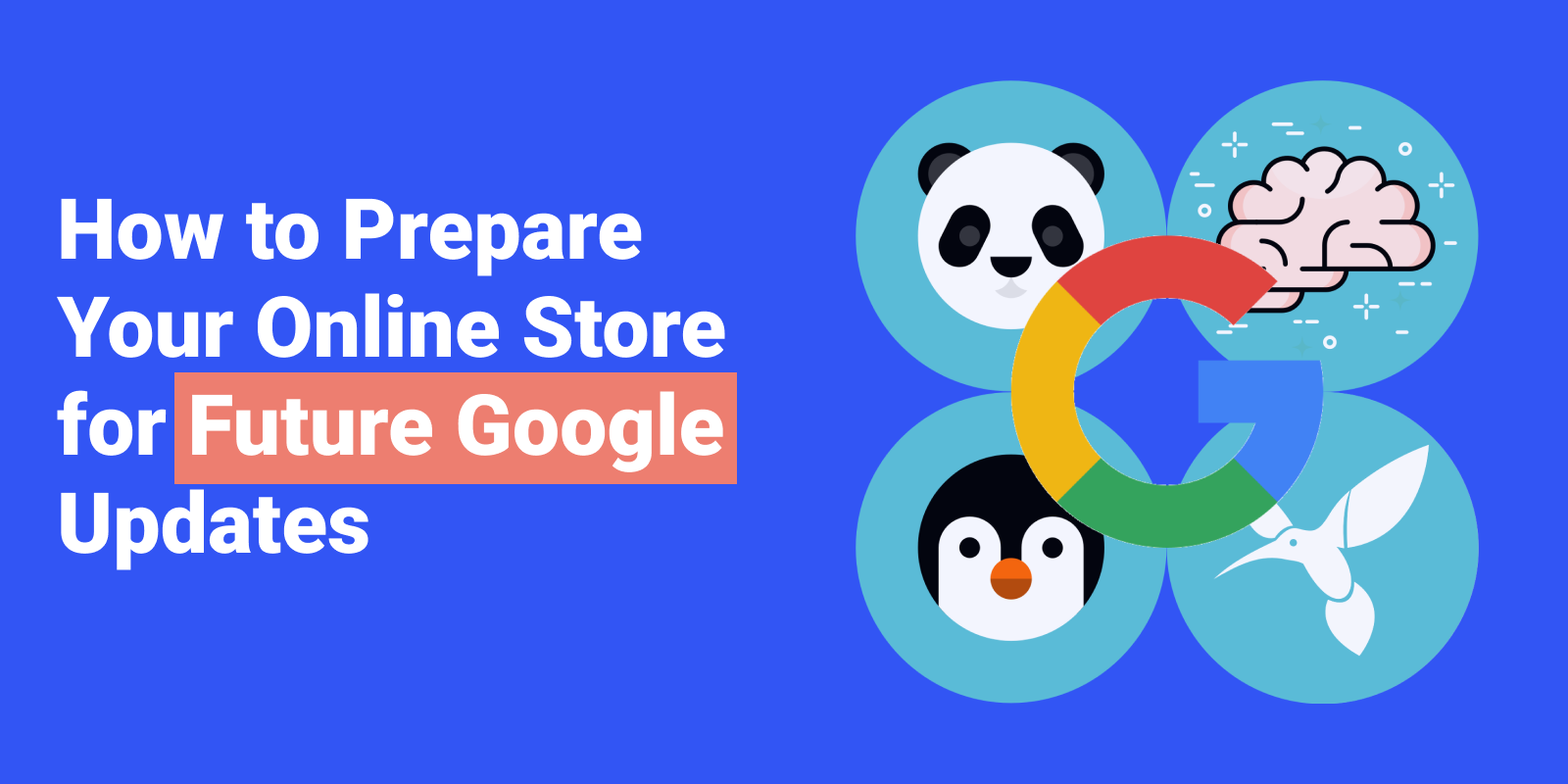 How to Prepare Your Online Store for Future Google Updates