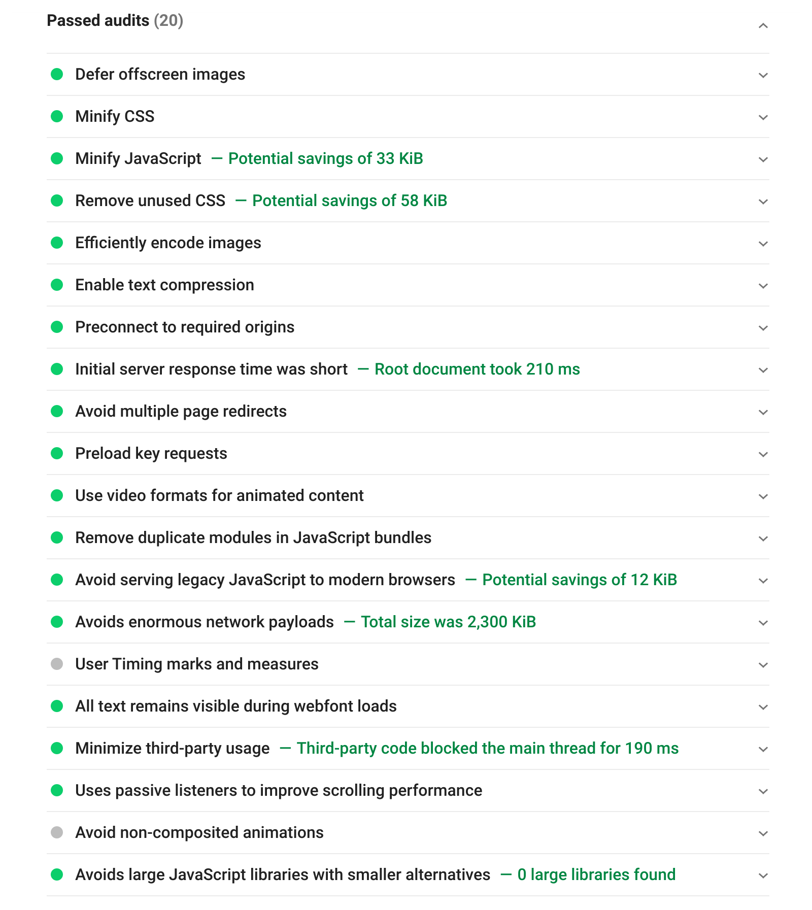 Passed Audits section in Google PageSpeed Insights