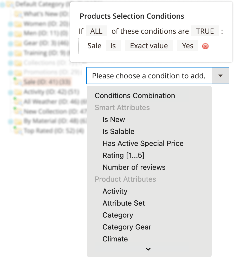 An example of conditions in Mirasvit Magento 2 Dynamic Categories extension